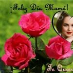 Marco de Feliz Día Mamá para regalar