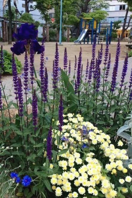 新阿波座公園のふれあい花壇