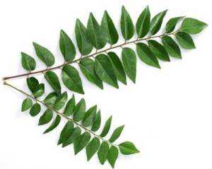 curry-leaves-for-hair-growth