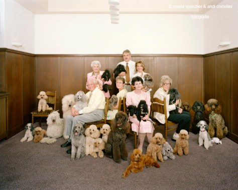 Ursula Sprecher & Andi Cortellini. Hobby Buddies. Poodle Club • Pudelclub