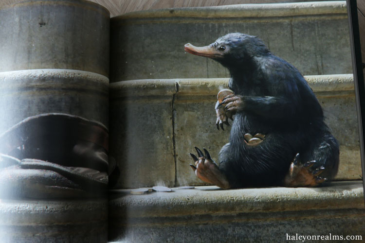 Fantastic Beasts And Where To Find Them - The Art Of The Film Book Review
