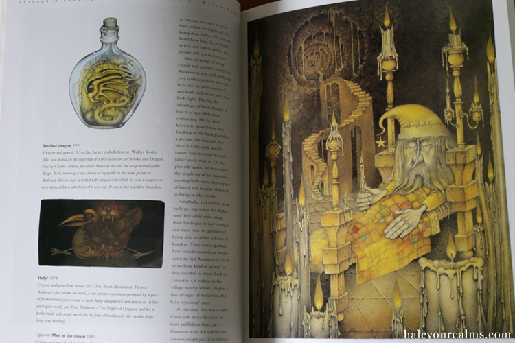 Through A Looking Glass - The Pictures of Wayne Anderson Art Book