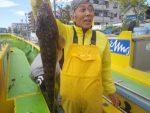 4月10日(金)高級魚マゴチ連日ツ抜け