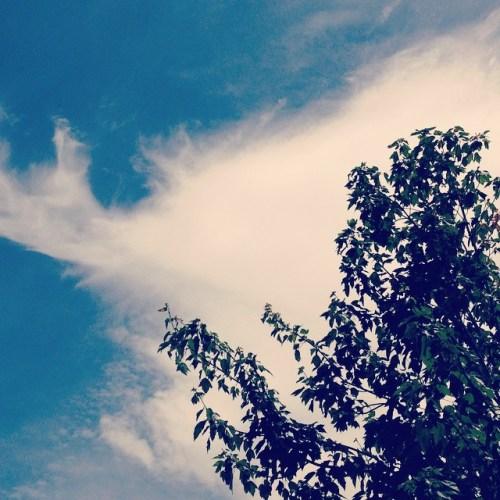 Happy Tree