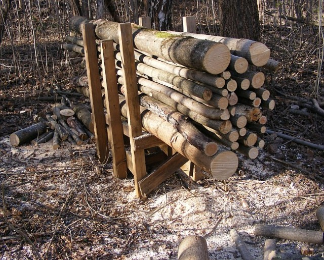 Cut Wood Logs ~ How to cut firewood from felled trees safely and easily