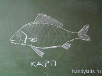 Рисунок рыбы - Карп