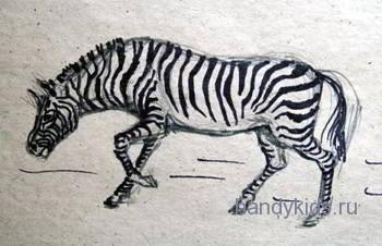 Нарисуем зебру