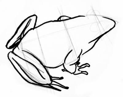 Рисуем лапы лягушки