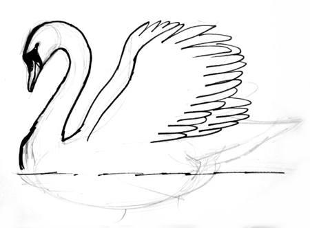 Нарисуем крылья лебедя