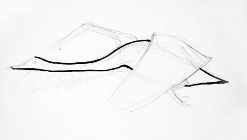 Рисуем лебедя в полёте