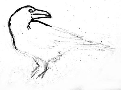 Рисуем ворона