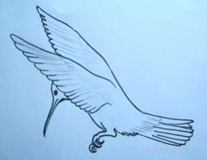 Узор перьев на птичке