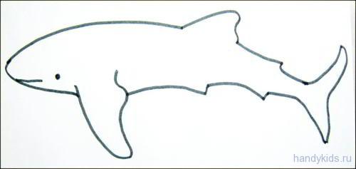 Раскраска Акула
