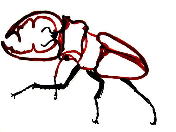 Раскраска Жук-олень