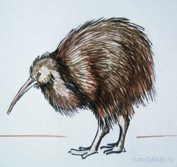 Рисунок-птица киви