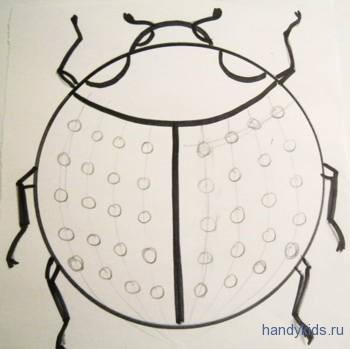 40 точек на крыльях жука.