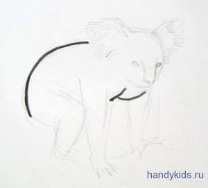 Рисуем коалу поэтапно