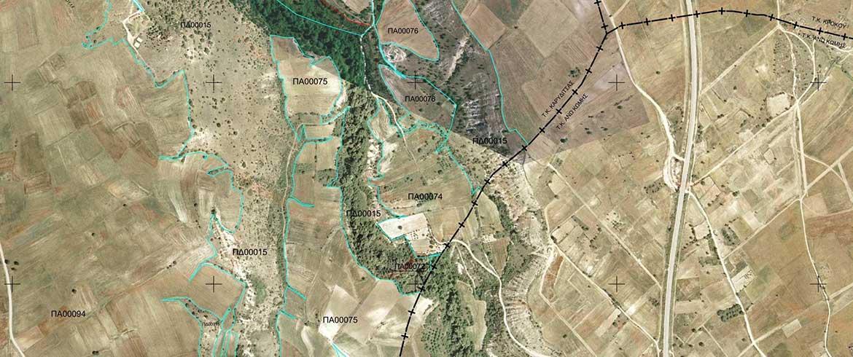 Αναρτήθηκαν οι πρώτοι δασικοί χάρτες στο Ν. Χανίων - Ποιες περιοχές αφορούν
