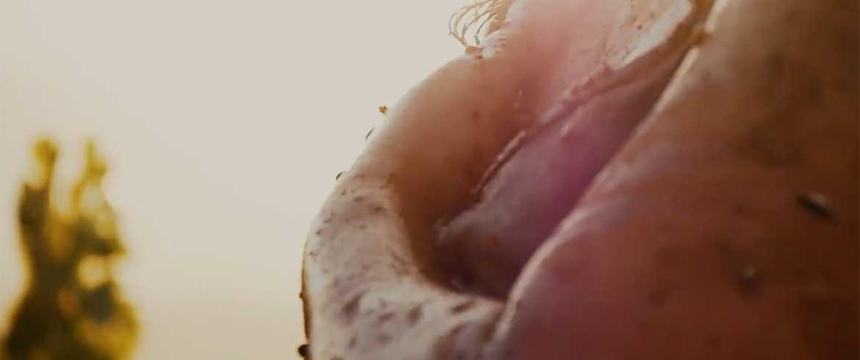 Ερωτας σε αμπελώνα - Το νέο αισθησιακό βίντεο του Θοδωρή Παπαδουλάκη