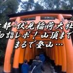 京都・伏見稲荷大社の初詣レポ!山頂まではまるで登山…