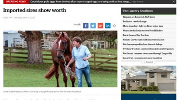 """Imported sires show worth"": Vollrath in the news"