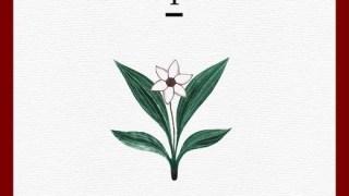 f(x)、12/15に新曲公開。SM「WINTER GARDEN」トップランナー