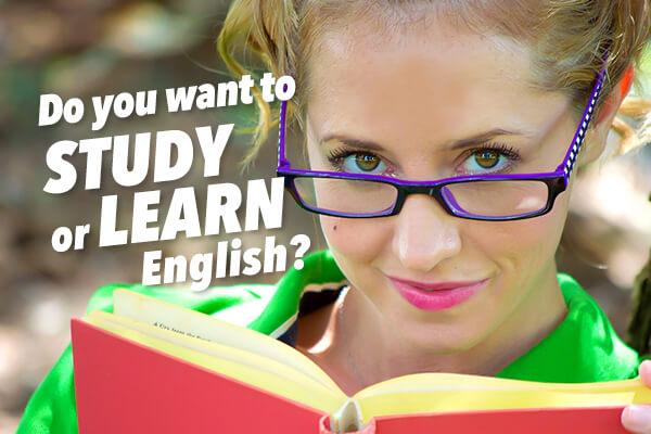 「Study」と「Learn」の違い