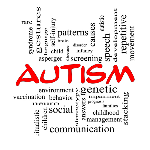 Recent Autism DX For my Son