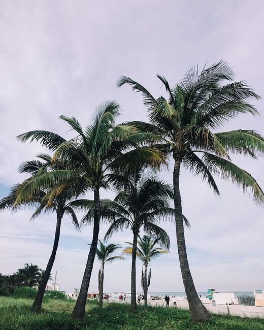 Moving to Fort Myers What to Know About the Schools