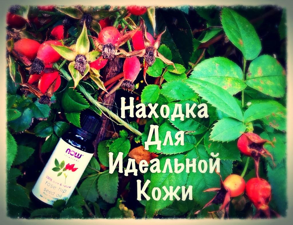 Масло Шиповника
