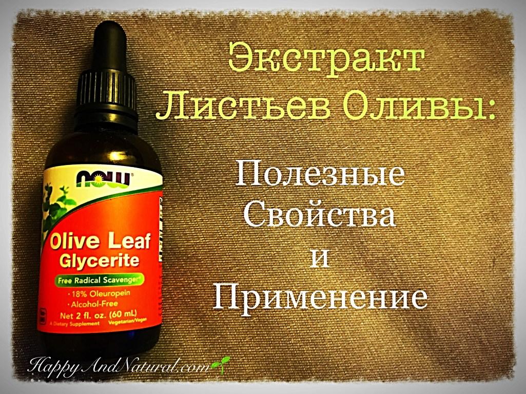 Листья Оливы: полезные свойства и применение