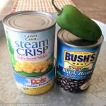 vegan black bean dip-6709