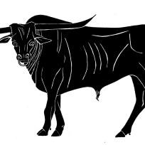 Taurus1copy