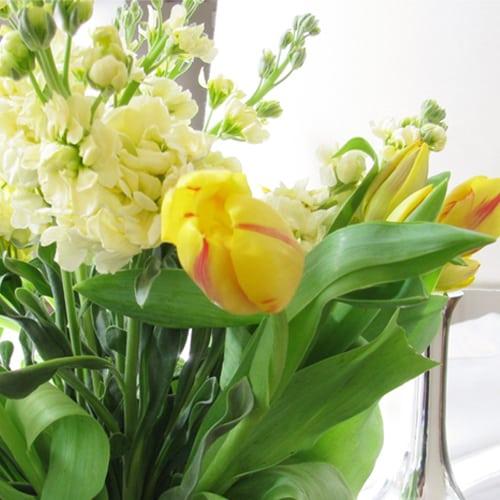 decorating ideas close up flowers