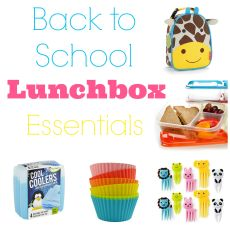 My Favorite Lunchbox Essentials