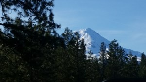As we drive north on CA-89, I keep trying to take a photo of Mt Shasta but there are too many trees in the way!