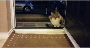 Life Changes When They Open the Door!