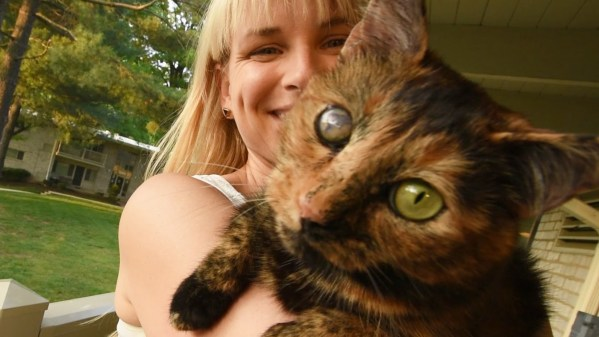 Kitty Rescued From 700-Cat Hell, Can`t Stop Licking Her New Mom