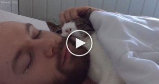 Adopted Shelter Cat And Her Human Have The Best Daily Routine