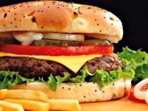 Hamburger-Nedir