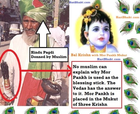 Mor Pankh is pious in Hinduism stolen by muslim fakirs and mazar clerics