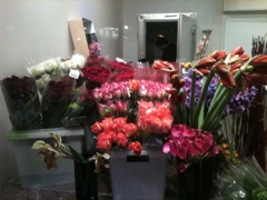 Franz James Floral Boutique in Harlem to open today, Lido Restaurant as well