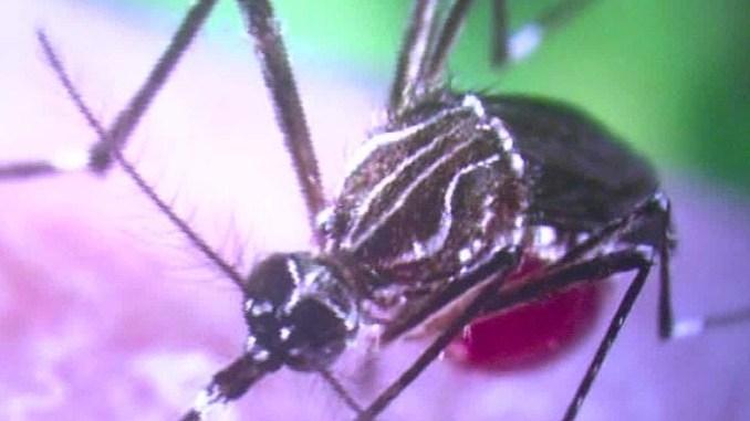 160202170607-zika-virus-sexually-transmitted-dnt-gupta-lead-00013808-exlarge-169