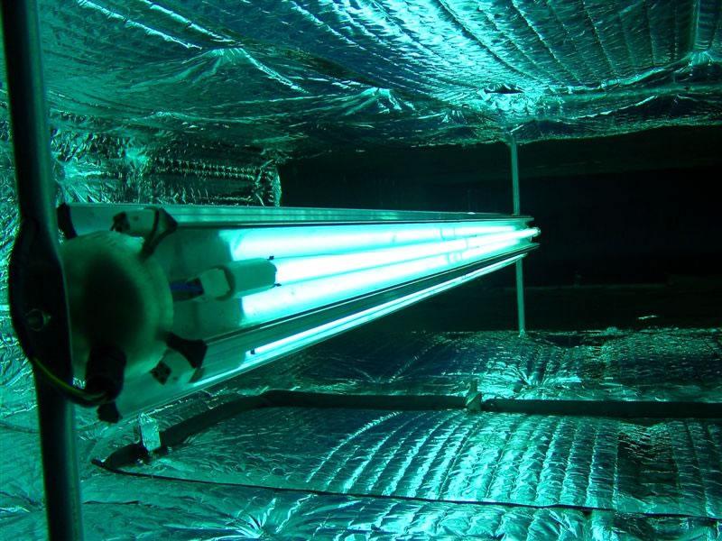 UV Germicidal Lighting