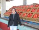 S. Cal Tomato Loadings, Plus Avocado Shipments