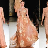 Elie Saab: Fall 2012 Haute Couture Collection - My Favourite Looks