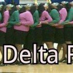 Gamma Delta AKA Fall 2011