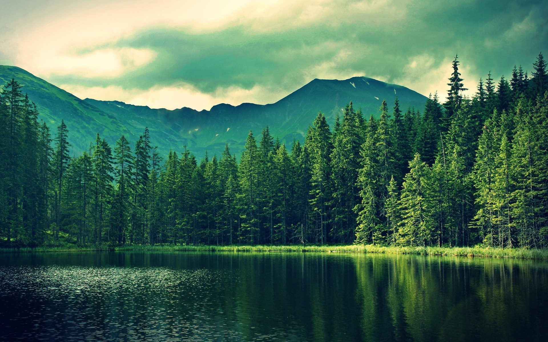 free scenery wallpapers for desktop - photo #21