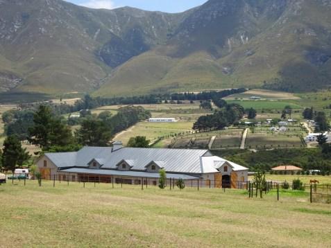 Hemel en Aarde Farm Equine Retreat