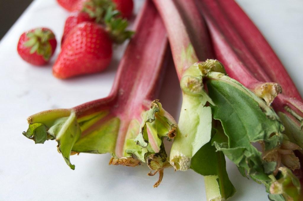 strawb rhubarb compote1